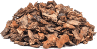maritime pine bark extract as a nootropic for BJJ