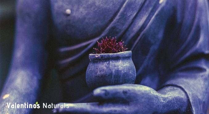 how to stick to a meditation routine - commit to meditation daily